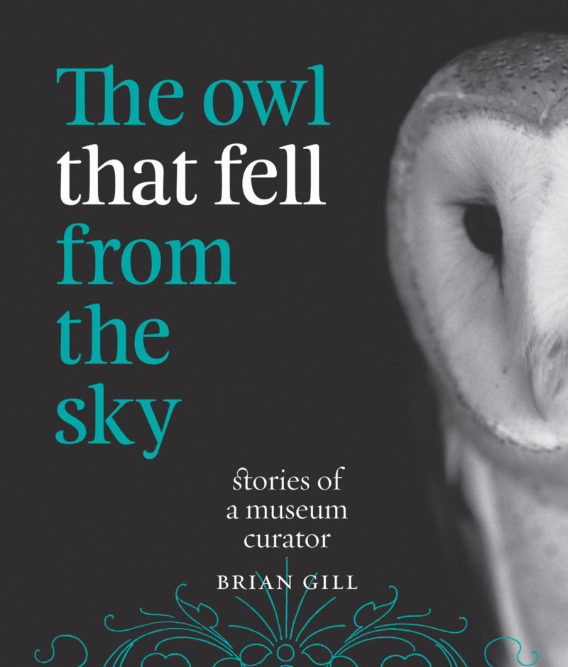 The Owl that Fell from the Sky – Stories of a Museum Curator