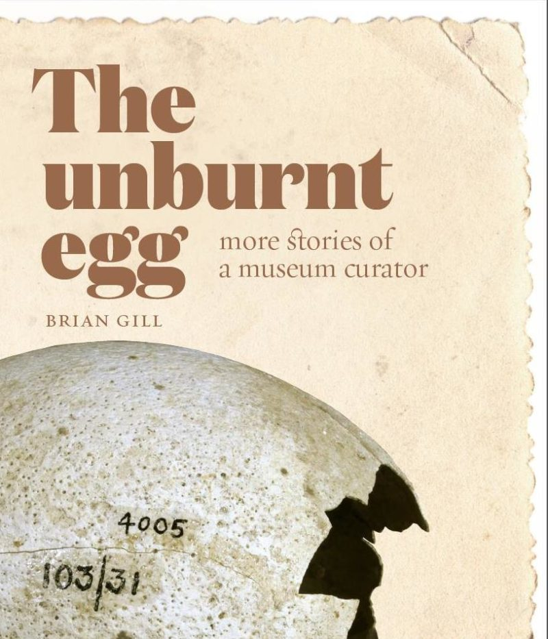 The Unburnt Egg – More stories of a Museum Curator